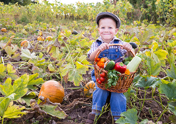Fall Produce Guide: Incorporating Veggies into Kids Meals<br />